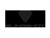 slingshot-logo-3