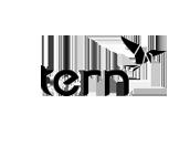 tern-logo-2